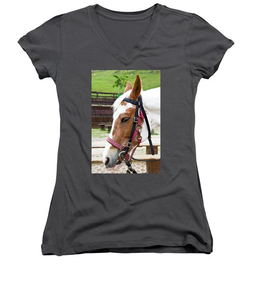 Women's V-Neck T-Shirt (Junior Cut) featuring the photograph Closeup Of Horse by Yew Kwang