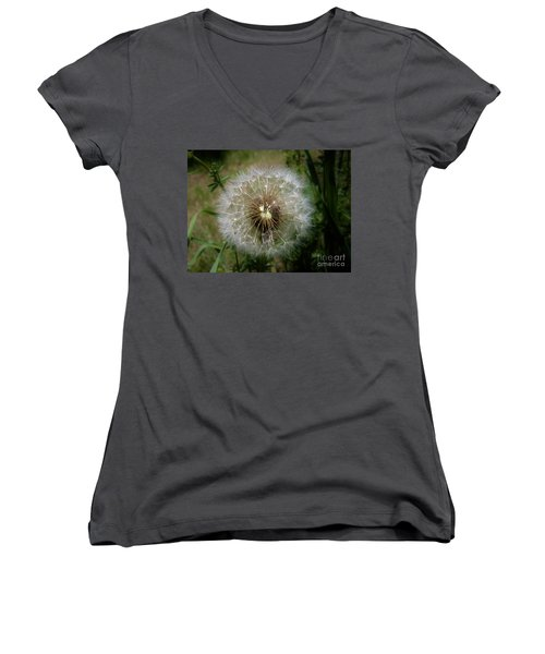 Women's V-Neck T-Shirt (Junior Cut) featuring the photograph Dandelion Going To Seed by Sherman Perry