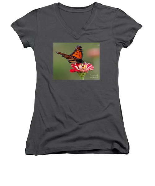 Delicate Women's V-Neck (Athletic Fit)