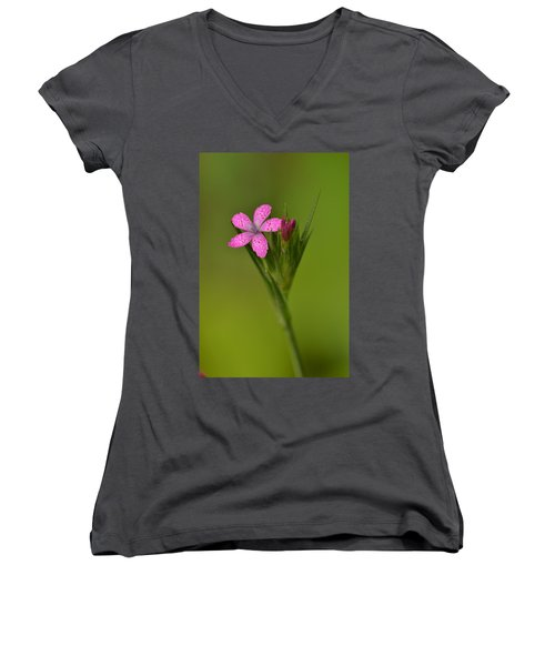 Women's V-Neck T-Shirt (Junior Cut) featuring the photograph Deptford Pink by JD Grimes