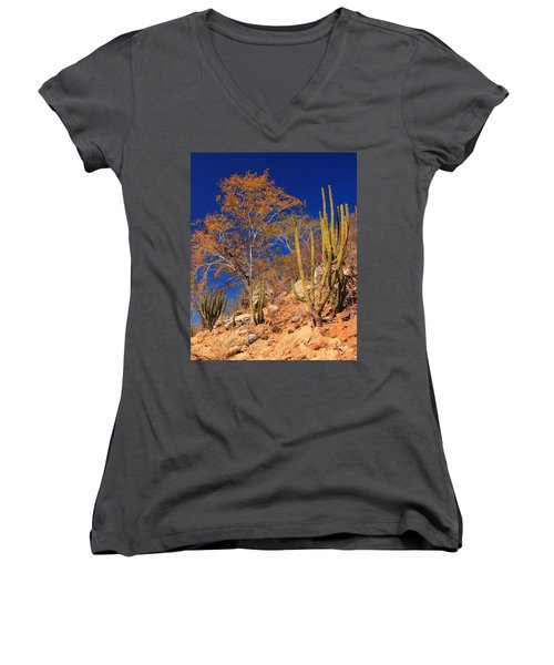 Desert Colors Women's V-Neck T-Shirt (Junior Cut) by Roupen  Baker