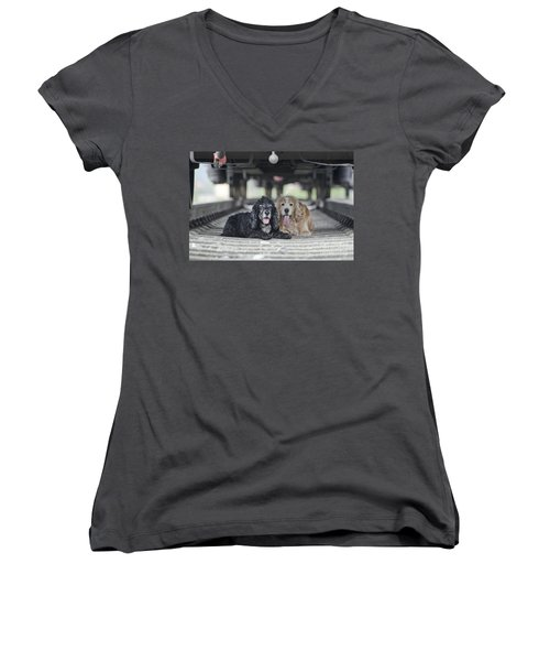 Dogs Lying Under A Train Wagon Women's V-Neck
