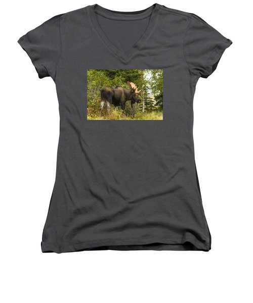Women's V-Neck T-Shirt (Junior Cut) featuring the photograph Fall Bull Moose by Doug Lloyd