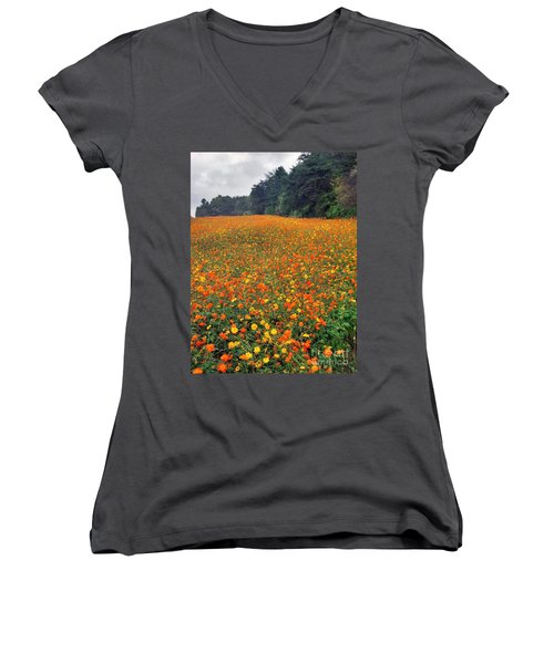 Women's V-Neck T-Shirt (Junior Cut) featuring the photograph Fall Flowers by Janice Spivey