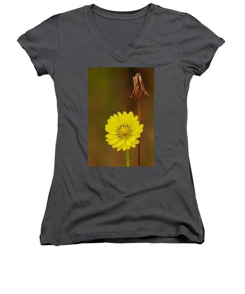 False Dandelion Flower With Wilted Fruit Women's V-Neck