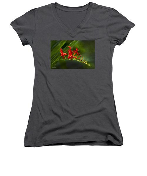 Fire In The Garden Women's V-Neck (Athletic Fit)