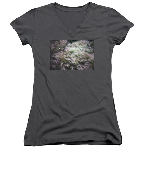 Foxtail Barley And Campion Women's V-Neck T-Shirt
