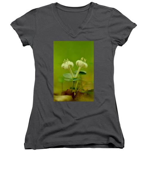 Women's V-Neck T-Shirt (Junior Cut) featuring the photograph Fuzzy Blooms by JD Grimes
