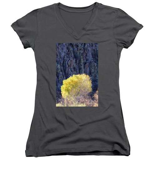 Gilded Autumn Women's V-Neck T-Shirt
