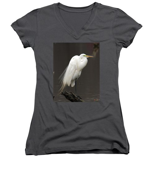 Great Egret Resting Dmsb0036 Women's V-Neck T-Shirt (Junior Cut) by Gerry Gantt