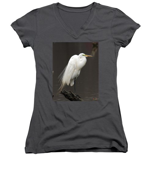 Great Egret Resting Dmsb0036 Women's V-Neck