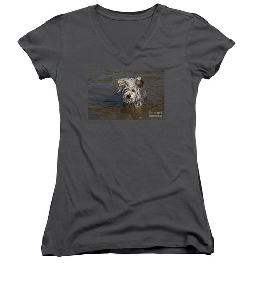 Women's V-Neck T-Shirt (Junior Cut) featuring the photograph Gremlin by Jeannette Hunt