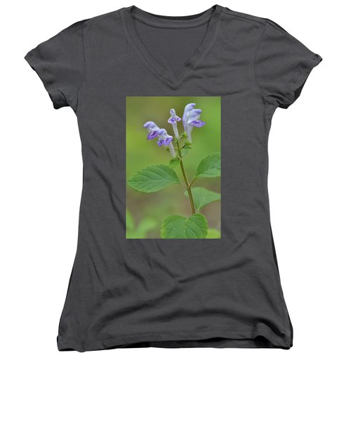Women's V-Neck T-Shirt (Junior Cut) featuring the photograph Hairy Skullcap by JD Grimes