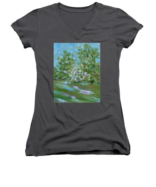 Hilltop Women's V-Neck T-Shirt (Junior Cut) by Judith Rhue