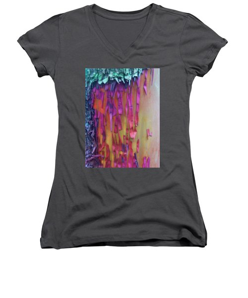 Imagination Women's V-Neck T-Shirt (Junior Cut) by Richard Laeton