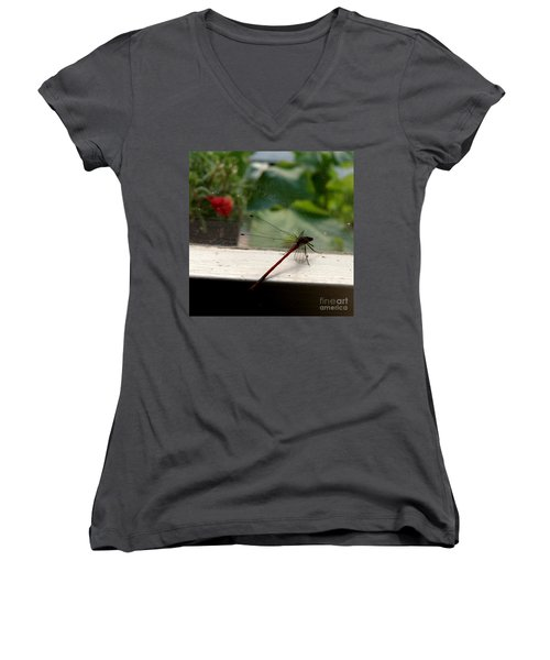 It's Always Greener Women's V-Neck T-Shirt (Junior Cut) by Lainie Wrightson