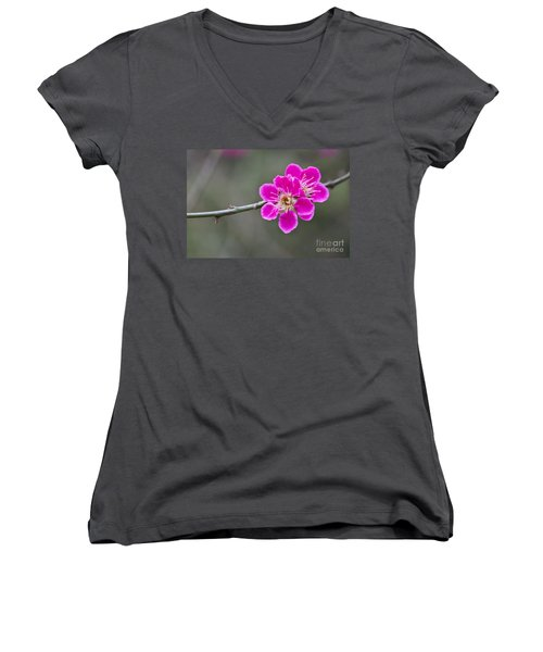 Women's V-Neck T-Shirt (Junior Cut) featuring the photograph Japanese Flowering Apricot. by Clare Bambers