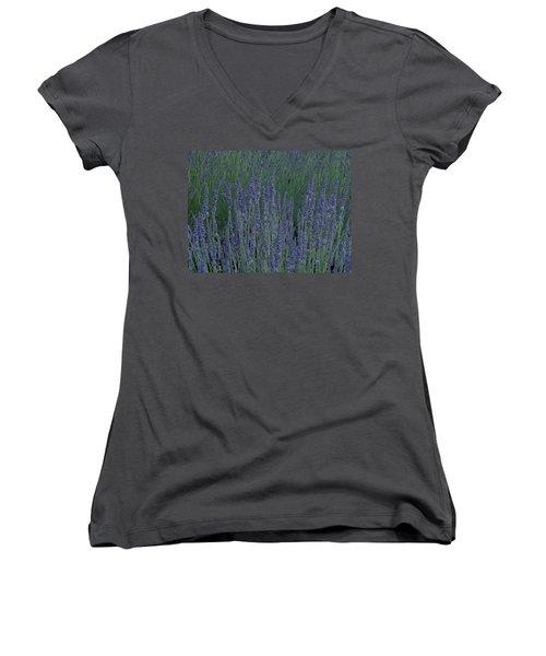 Just Lavender Women's V-Neck T-Shirt (Junior Cut)