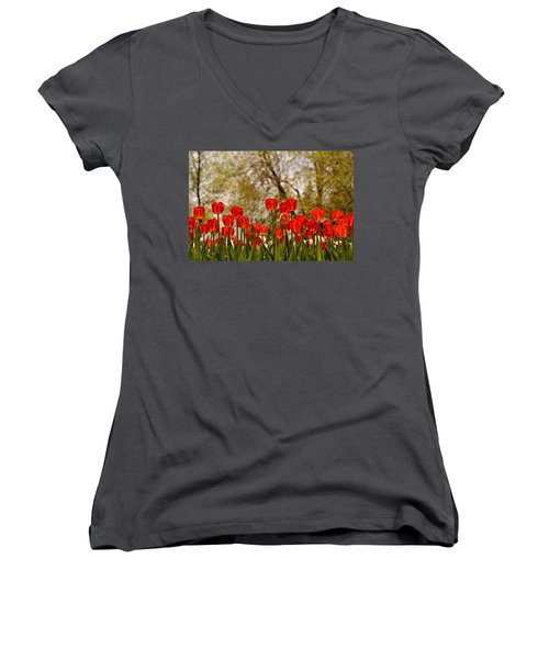 Liberation Women's V-Neck (Athletic Fit)