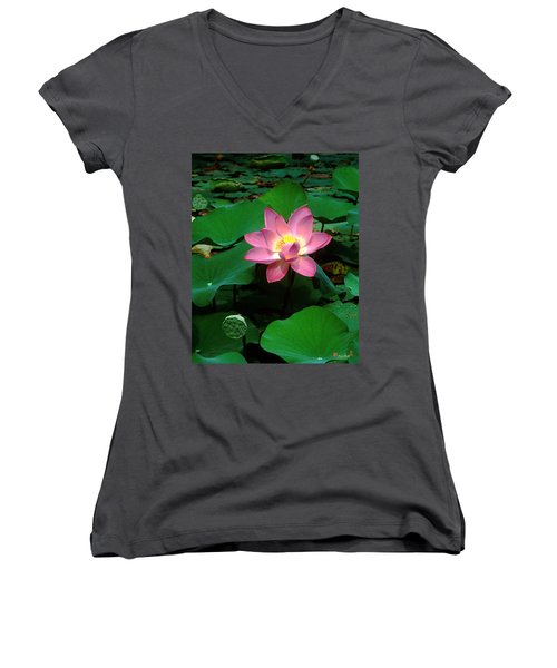 Lotus Flower And Capsule 24a Women's V-Neck