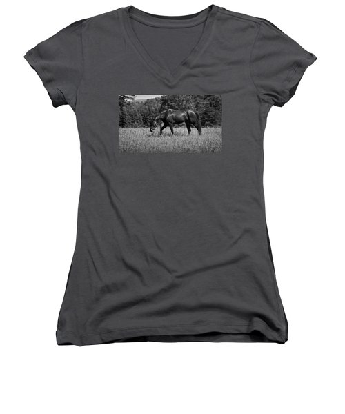 Women's V-Neck T-Shirt (Junior Cut) featuring the photograph Mare In Field by Davandra Cribbie