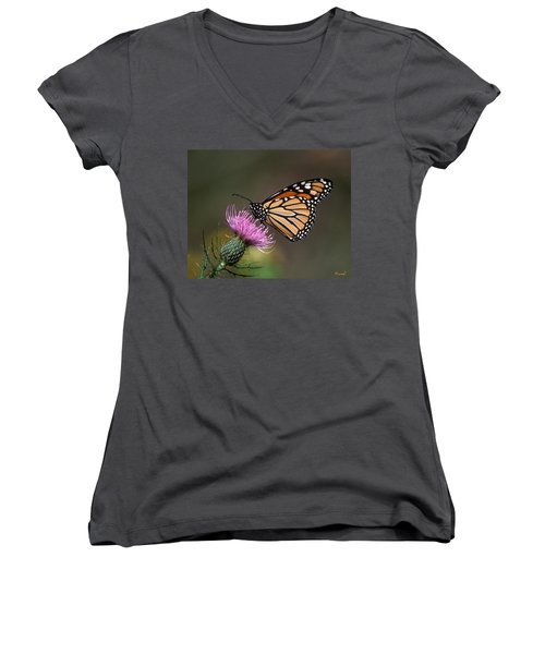 Monarch Butterfly On Thistle 13a Women's V-Neck T-Shirt (Junior Cut) by Gerry Gantt