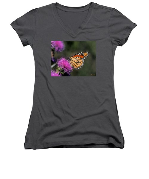 Monarch On Thistle 13f Women's V-Neck T-Shirt (Junior Cut) by Gerry Gantt