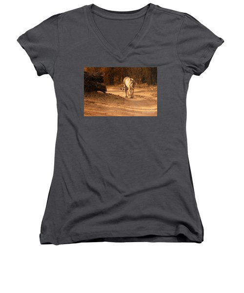 Women's V-Neck T-Shirt (Junior Cut) featuring the photograph Morning Stroll by Fotosas Photography