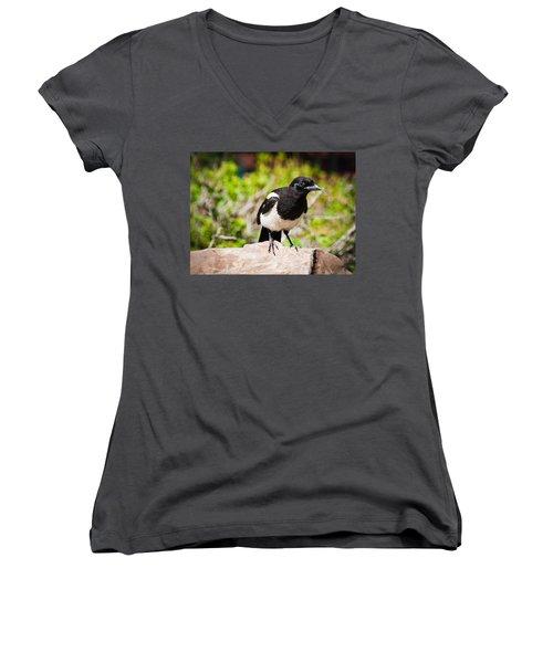 Women's V-Neck T-Shirt (Junior Cut) featuring the photograph Mr. Magpie by Cheryl Baxter