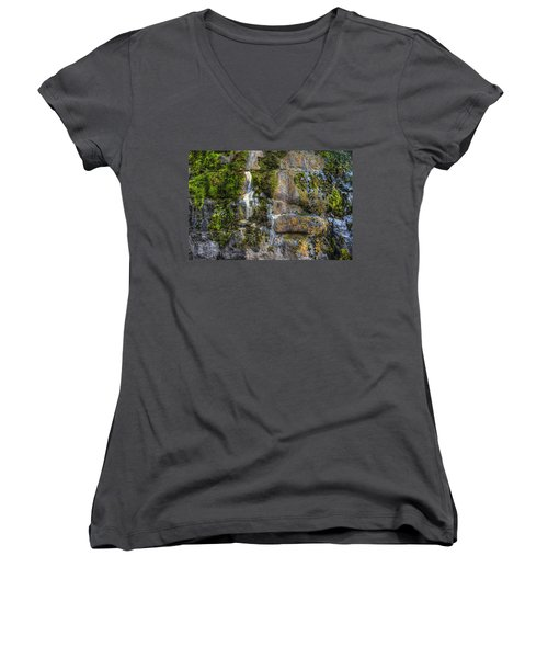Nature's Abstract Women's V-Neck T-Shirt
