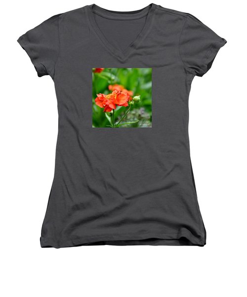 Never Boring Red And Green Women's V-Neck T-Shirt (Junior Cut) by Tanya  Searcy