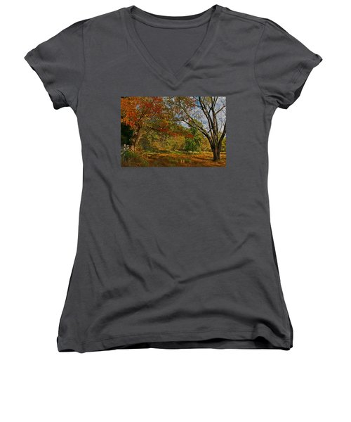 Old Tree And Foliage Women's V-Neck T-Shirt