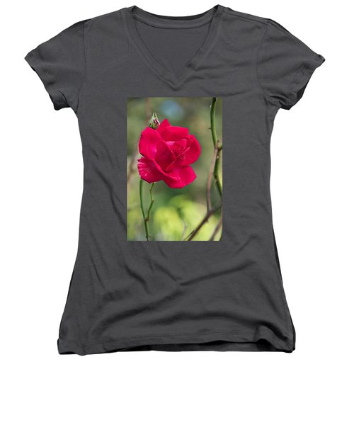 Women's V-Neck T-Shirt (Junior Cut) featuring the photograph One Rose by Joseph Yarbrough