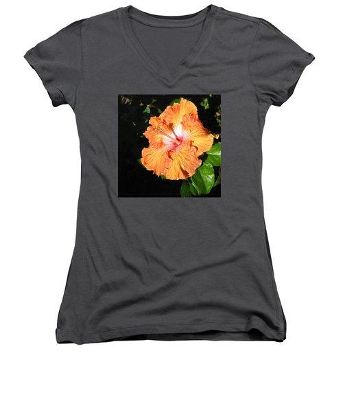 Orange Hibiscus After The Rain 1 Women's V-Neck T-Shirt (Junior Cut) by Connie Fox