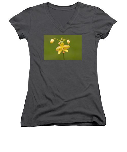 Orchid Number 1 Women's V-Neck T-Shirt (Junior Cut) by Rich Franco
