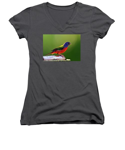 Painting Color Women's V-Neck