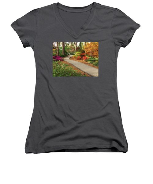 Peaceful Path Women's V-Neck T-Shirt