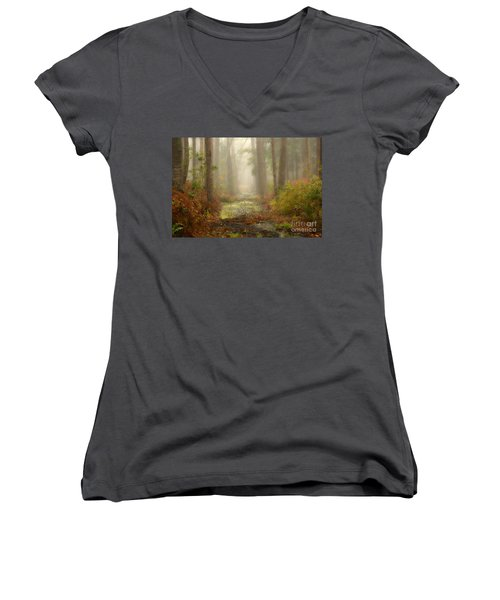 Peaceful Pathway Women's V-Neck (Athletic Fit)