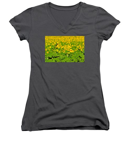 Peeking Above  Sea Of Yellow Women's V-Neck T-Shirt (Junior Cut) by Colleen Coccia