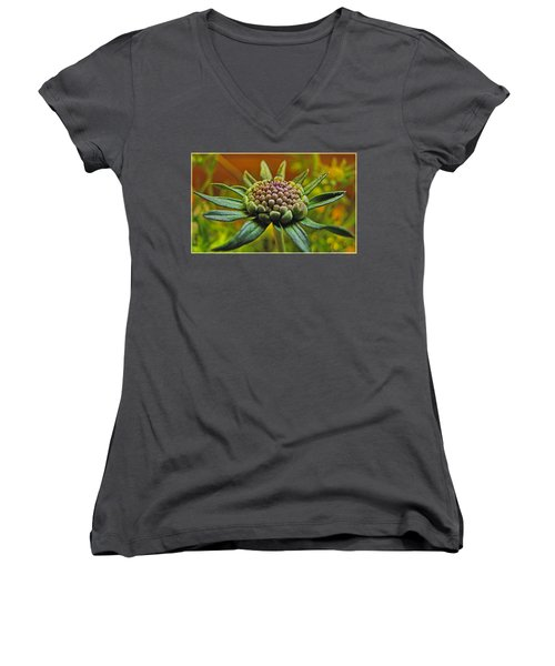 Women's V-Neck T-Shirt (Junior Cut) featuring the photograph Pinchshin Bud by Debbie Portwood