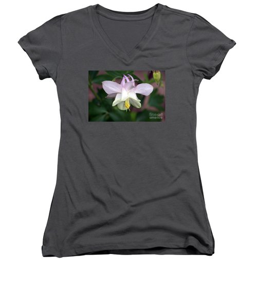 Pink Perfection Women's V-Neck (Athletic Fit)