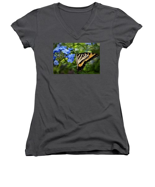 Women's V-Neck T-Shirt (Junior Cut) featuring the photograph Plumbago And Swallowtail by Steven Sparks
