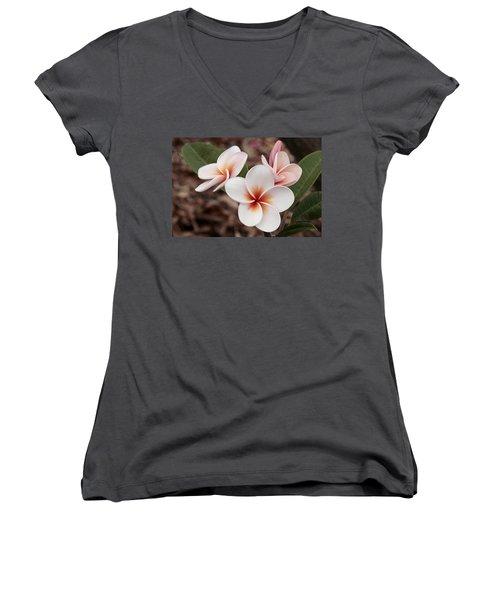 Women's V-Neck T-Shirt (Junior Cut) featuring the photograph Plumeria   Kona Hawii by James Steele
