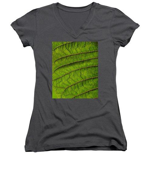 Poinsettia Leaf II Women's V-Neck