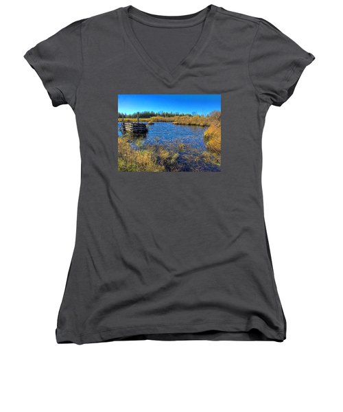 Pond 1 Today.psd Women's V-Neck T-Shirt