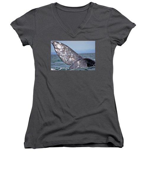 Women's V-Neck T-Shirt (Junior Cut) featuring the photograph Powerful Fluke by Don Schwartz