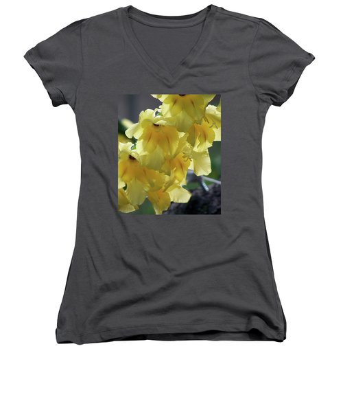 Women's V-Neck T-Shirt (Junior Cut) featuring the photograph Radiance by Thomas Woolworth