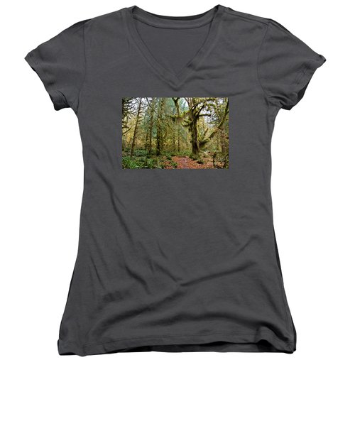 Rain Forest In Fall Women's V-Neck (Athletic Fit)
