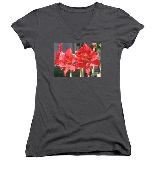 Red Amaryllis Women's V-Neck T-Shirt (Junior Cut) by Kume Bryant
