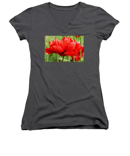 Women's V-Neck T-Shirt (Junior Cut) featuring the photograph Red And Green by Fotosas Photography